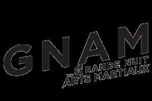 Création de logo sur Nice