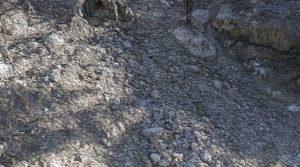 Terrain - Modélisation 3D sur Nice